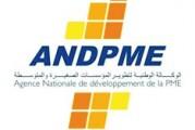 <span style='font-weight:300;'>Mise à niveau des PME</span><br/>Réforme en vue pour L'ANDPME