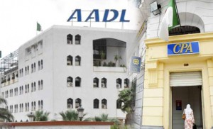 adl cpa